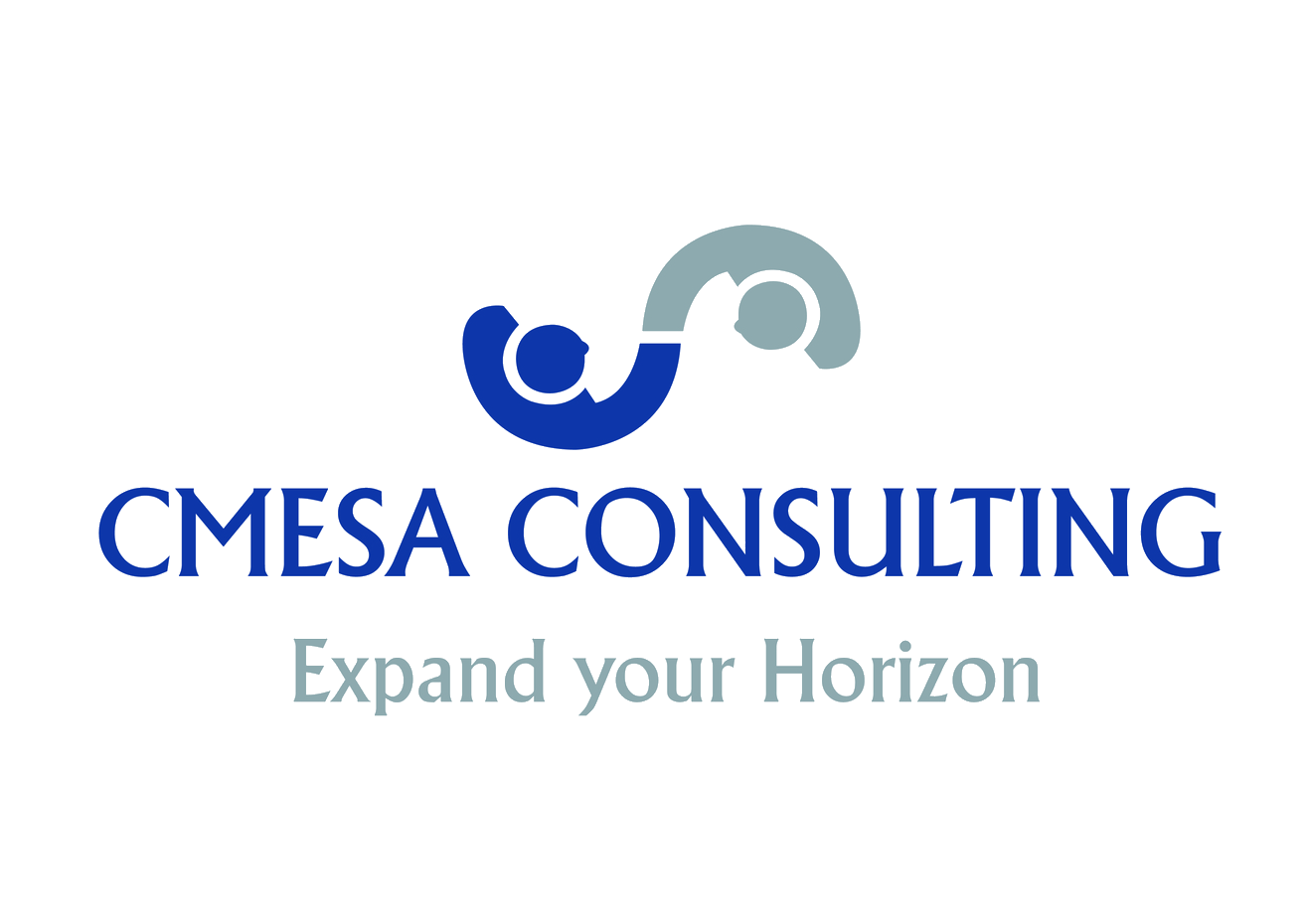 CMESA Consulting